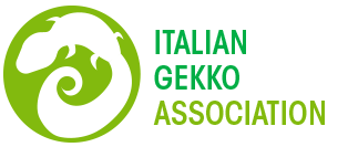 Italian Gekko Association - IGA